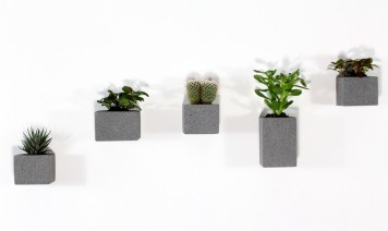aera-wall-planters-set-of-5-m-dex-design-miles-dexter-clippings-1411371