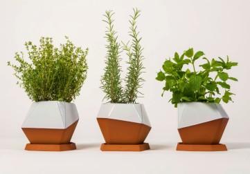 geometric-тerracota-pot-set-half-glazed-nick-fraser-nick-fraser-clippings-8511621